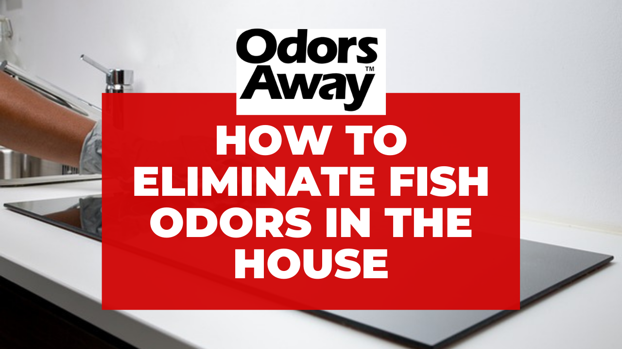 Eliminate Fish Odors in House